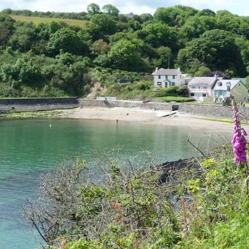 Pembrokeshire Dinas Country Local Beaches