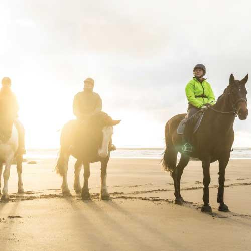 Pembrokeshire Horse Riding
